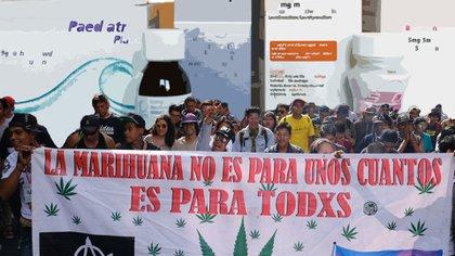 La gratuidad deberá ir acompañada de la comprobación médica y bajo la ley vigente de que el paciente necesita la marihuana (Foto: Cuartoscuro/ Fotoarte: Steve Allen, Infobae México)