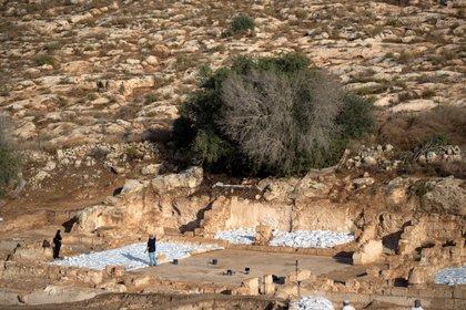 Descubrimiento de una iglesia bizantina de 1.500 años de antigüedad en Israel (REUTERS/Ronen Zvulun)