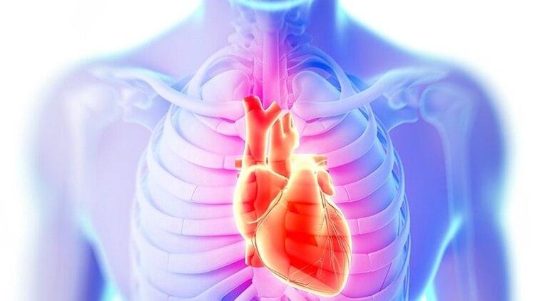 Un documento de la Sociedad Argentina de Cardiología (SAC) recordó cuándo hay que consultar de urgencia ante síntomas cardiovasculares