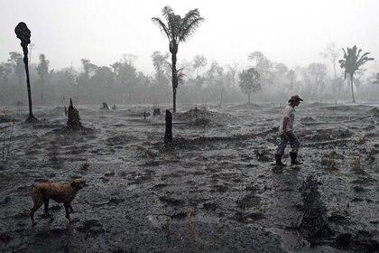 El amazonas tras los incendios forestales (Photo by CARL DE SOUZA / AFP)
