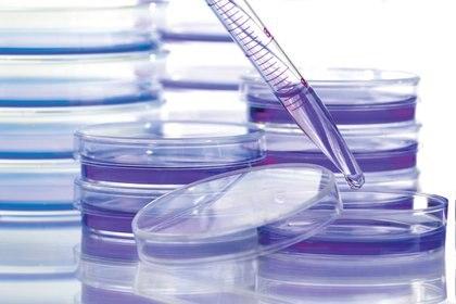 En 2020 la investigación para combatir el cáncer ha sufrido un revés tal que equivale a un atraso de casi un año y medio en los grandes progresos. (Cancer Research UK/Handout via REUTERS)