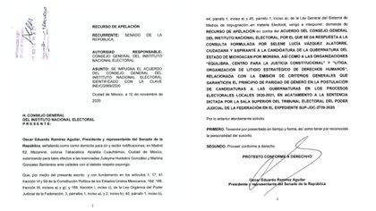 Algunos detalles de la impugnación obtenida por Infobae México (Foto: Especial)
