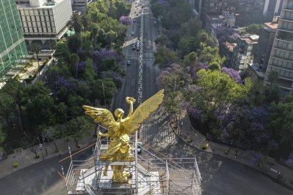 Todos los hoteles en la Ciudad de México deberán suspender servicios durante la emergencia sanitaria (Foto: Pedro Pardo / AFP)