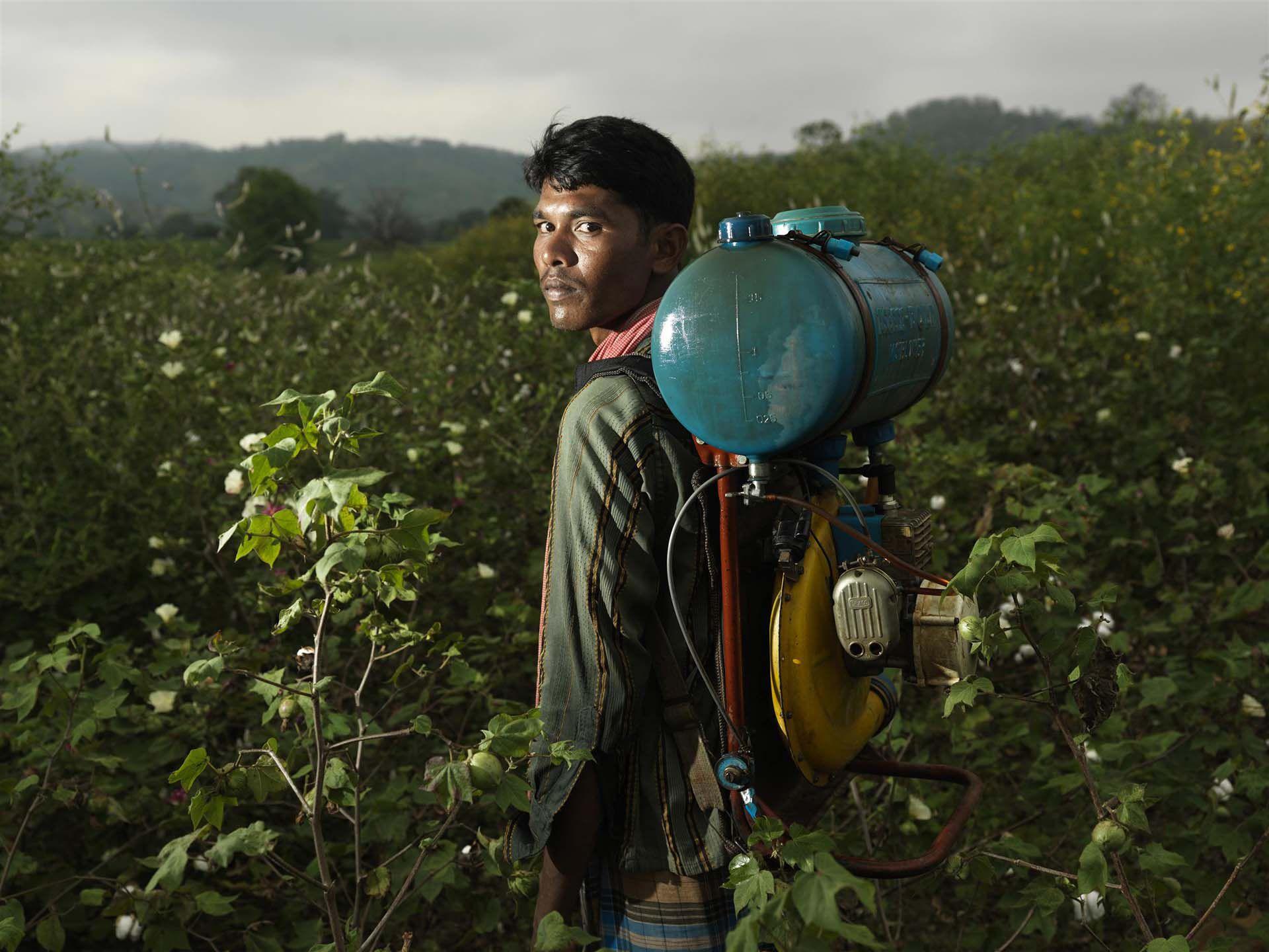 pesticidas prohibidos en Europa