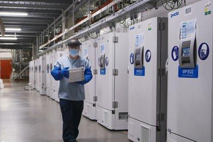 Los congeladores almacenan la vacuna en la planta farmacéutica de Pfizers en Pures, Bélgica (Reuters)