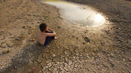 """Según el informe, este incremento se debe a """"la conjunción de las actividades humanas y a un potente episodio de El Niño"""""""