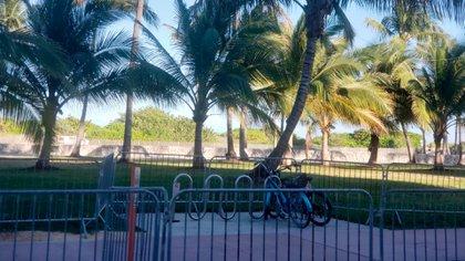 Las calles de Miami se encuentran prácticamente vacías ante el pedido de las autoridades a la población de permanecer en su casa, mientras sigue en aumento el número de contagios por coronavirus. (Foto: Infobae)