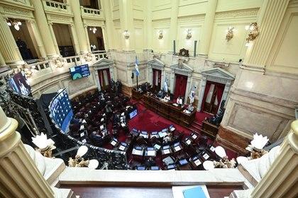 El Congreso trabajará durante el verano con sesiones ordinarias y extraordinarias ( Foto: Charly Diaz Azcue  / ComunicaciónSenado )