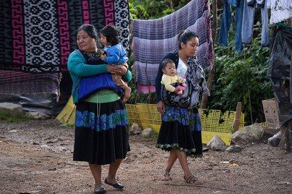 El 30% de la población habla alguna de las 68 lenguas indígenas   (Foto: EFE/Carlos López)