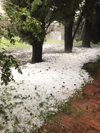 Se registró caída de granizo de considerable tamaño en Santa Rosa (Fotos y videos: Twitter)