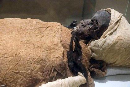 La momia de Segenenre fue descubierta en 1881 por un grupo de arqueólogos que estudiaban las tumbas de Deir el-Bahir (Foto: EPA)
