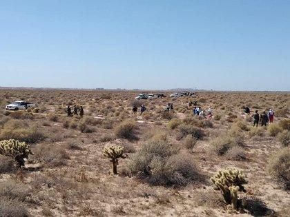 Es una de las fosas más grandes halladas en Sonora (Foto:Madres buscadoras de Sonora)