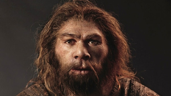 La migración constante del homo sapiens desde África selló el destino del hombre de Neandertal