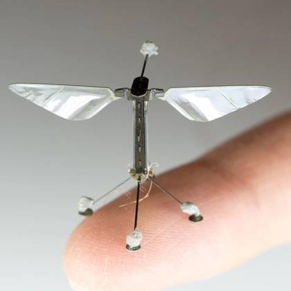 Robobee tiene el tamaño de un clip, pesa una décima de grano y cuenta con músculos artificiales.