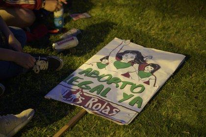 Fernández reiteró que el Estado no debe desentenderse de la problemática de salud pública que implican los abortos clandestinos