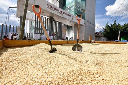 Secretaría de Bienestar rechazó las acusaciones de corrupción señaladas por el PRD  FOTO: DASSAEV TÉLLEZ ADAME/CUARTOSCURO.COM