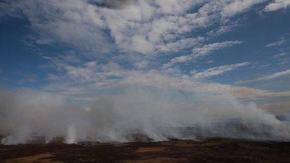 Los incendios tienen por objetivo expandir la frontera agropecuaria