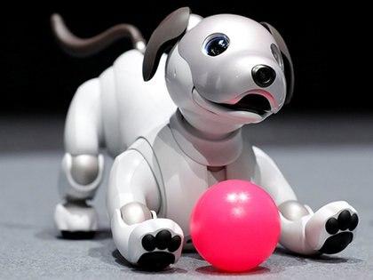 Aibo corresponde a la última generación de perros robots de la compañía. El primer ejemplar fue presentado al mercado en 1999 (Sony)