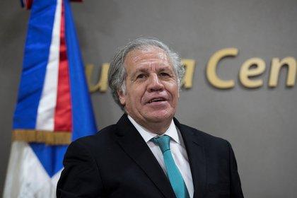 El secretario general de la Organización de Estados Americanos (OEA), Luis Almagro (EFE)