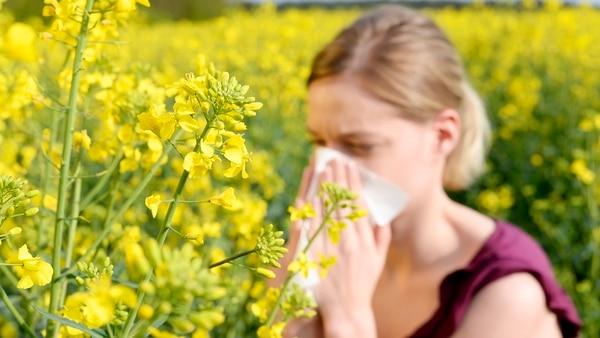 Una teoría asegura que la higiene puede llegar a reducir la taza de mortalidad en los niños, pero aumenta la incidencia de alergia (Getty)
