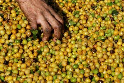 """""""La creciente popularidad del café de filtro también ha visto un cambio en la forma en que los tostadores locales tuestan sus granos de café"""" (REUTERS)"""