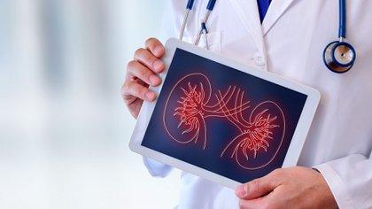 Para cuidar la salud de los riñones es necesario llevar un estilo de vida saludable (Shutterstock)