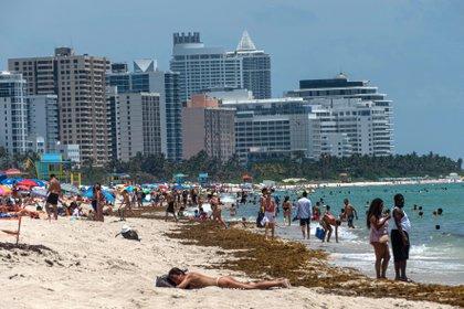 Fotografía tomada el pasado 10 de junio en la que se registró a cientos de personas en la playa de Miami Beach (Florida, EE.UU.). EFE/Giorgio Viera/Archivo