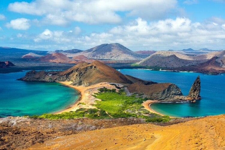 Famosas por inspirar la teoría de la evolución de Charles Darwin, las Islas Galápagos son conocidas por su fauna única e intrépida