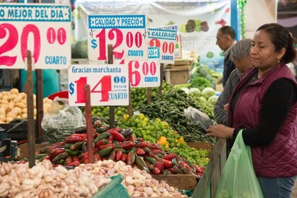 El gobierno buscará impulsar las frutas y verduras que se siembren en las regiones donde se ofertan (Foto: Andrea Murcia, Cuartoscuro)