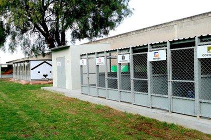 Centro de Transferencia Canina (Foto: Twitter@MetroCDMX)