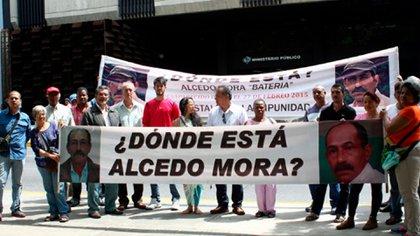 Alcedo Mora no aparece