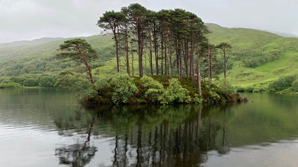 Loch Eilt en las Highlands de Escocia es el telón de fondo de una escena de la tercera película cuando Hagrid vadea sombríamente en el agua después de enterarse de la sentencia de muerte de Buckbeak. La pequeña isla, Eilean na Moine, fue utilizada como la tumba de Dumbledore en la séptima película