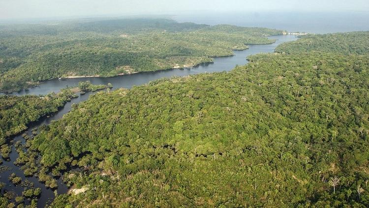 Amazonia (EFE)