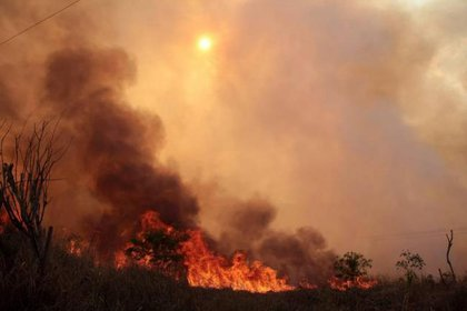 Incendios forestales en Antioquia. Foto: Colprensa.