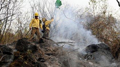 SEMARNAT aseguró que el incendio forestal en el Tepozteco ha sido controlado en un 90%
