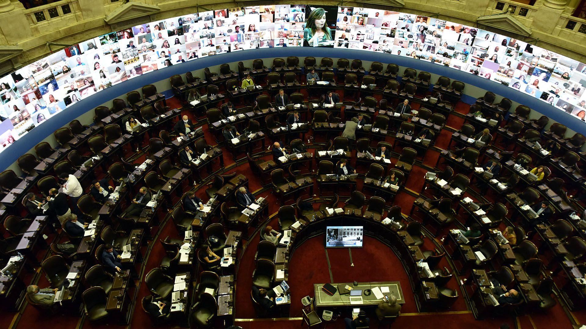 La primer sesión virtual de Diputados (Franco Fafasuli)