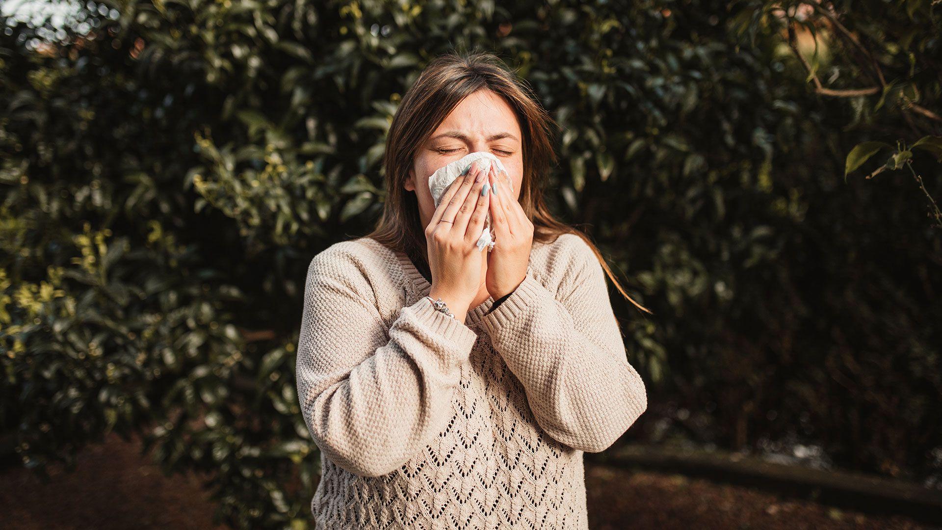 rinitis alergia