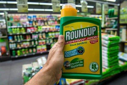 Rounup es el herbicida elaborado con glifosato de la multinacional Monsanto (adquirida por Bayer), que un hombre de 46 años dice que lo enfermó de cárcel terminal.