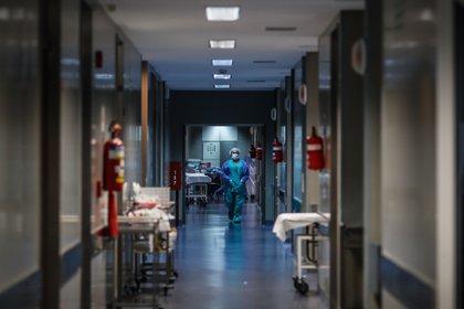 Un médico camina por un pasillo de un hospital (EFE/ Juan Ignacio Roncoroni/ archivo)