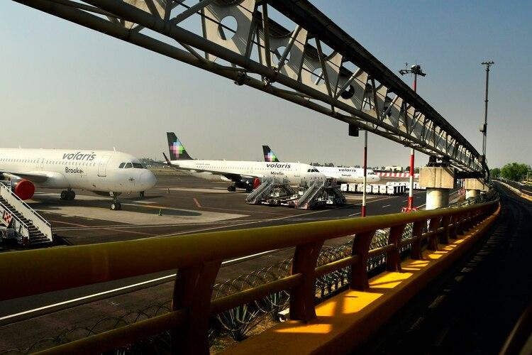 Aun así, coincide en que el Gobierno federal debería intervenir para evitar que alguna de las compañías aéreas mexicanas se estrelle. (Foto: EFE/Jorge Nunez)