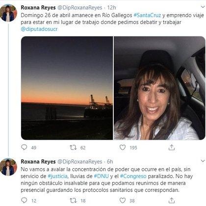 Antes de partir hacia Capital Federal, la diputada Roxana Reyes contó acerca de su viaje en su cuenta de Twitter.