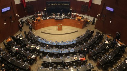 La Ley será turnada a la Cámara de Diputados, donde será deliberada su aprobación por el Congreso de la Unión (Foto: Cuartoscuro)