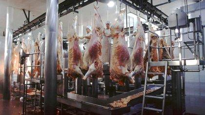 Con políticas públicas a favor, la exportación de carne vacuna también se incrementaría (NA)