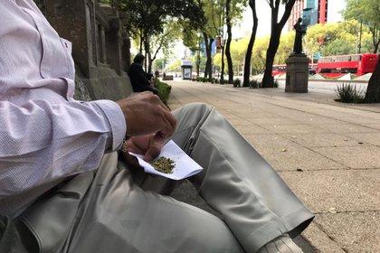 Marihuana Senado Mexico (Foto: Antonio San Juan/Infobae)