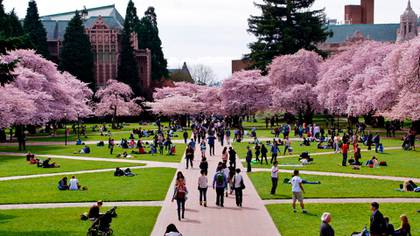 Campus de la Universidad de Washington en Seattle