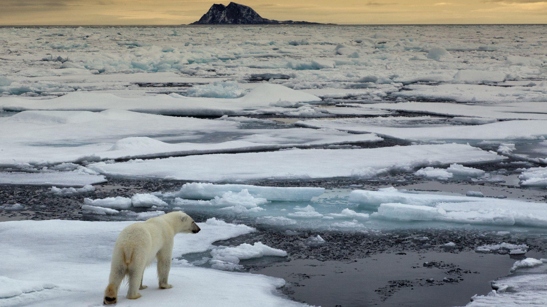 El derretimiento de los glaciares podría aumentar siete metros y sumergir islas y regiones costeras por todas partes del planeta