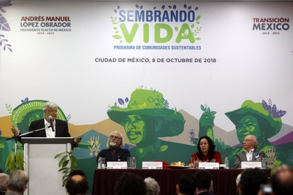 (Foto: EFE/Sáshenka Gutiérrez/Archivo)
