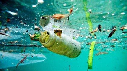 El 80% de los desechos proviene de la tierra (Foto: Twitter).