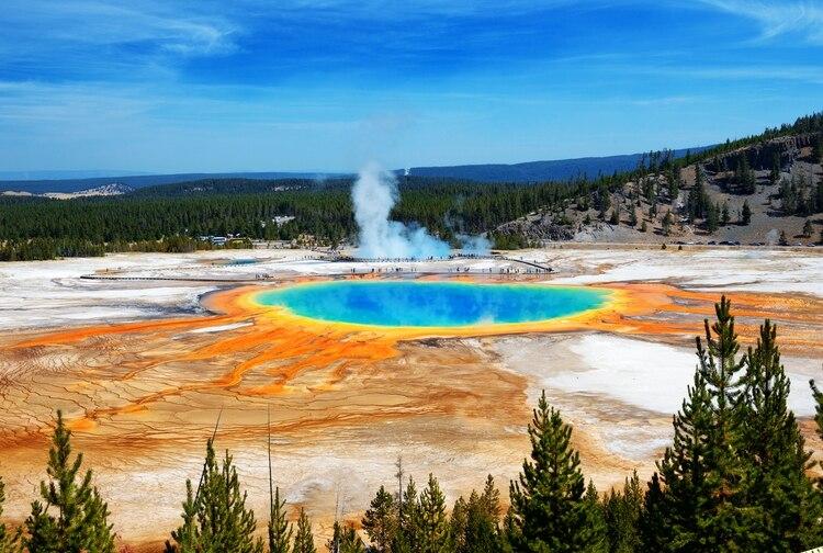 Aunque no es la característica más famosa en el Parque Nacional de Yellowstone, el Grand Prismatic Spring es sin duda la más impresionante. Más grande que un estadio de fútbol y más profundo que un edificio de 10 pisos, se despliega en brillantes anillos de color verde, amarillo y naranja debido a las bacterias amantes del calor que lo llaman hogar