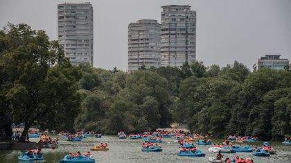 Anexarán 105 hectáreas a la nueva sección del Bosque de Chapultepec (Foto: Cuartoscuro)